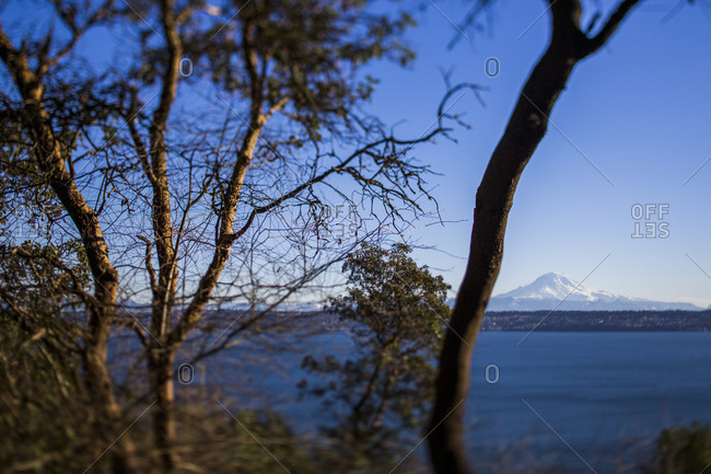View of Mt. Rainier across water, Washington State