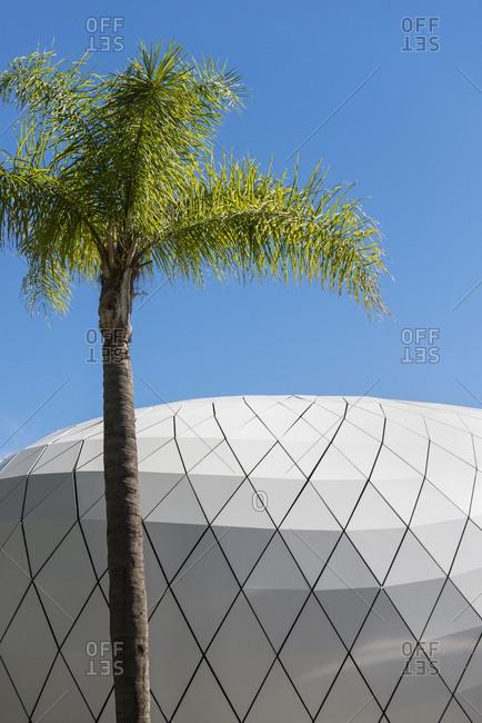 Palm tree beside a geometric wall of the Monte Carlo Pavilions