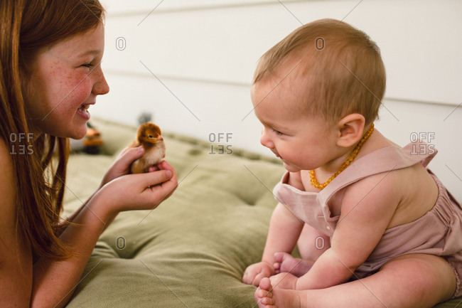 Sister showing baby looking at a young chick