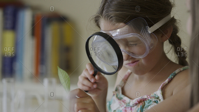 Curious girl examining leaf with magnifying glass in science laboratory experiment