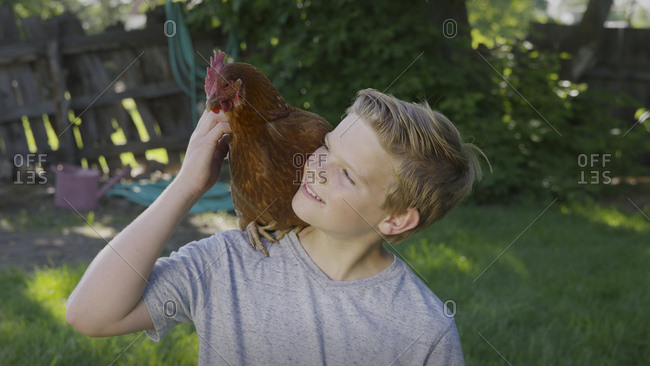 High angle view of smiling boy petting rooster on shoulder in backyard