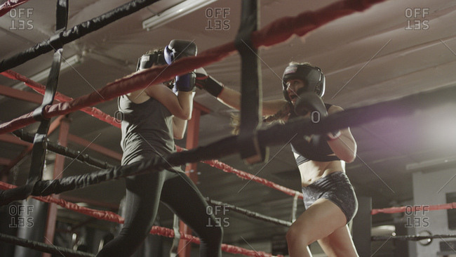 Low angle view of female boxers punching and fighting in boxing ring during match