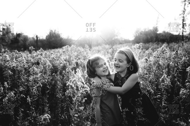 Affectionate young sisters in field of wildflowers
