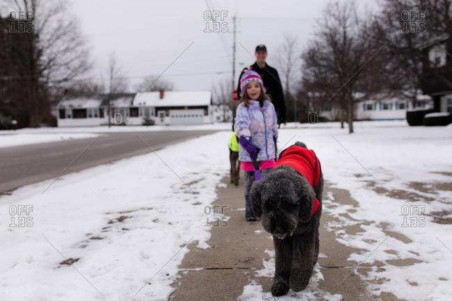 Family walking dog on sidewalk in winter