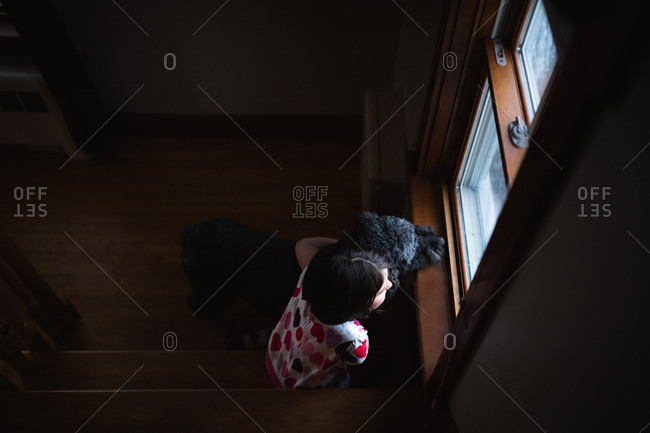 Overhead view of girl and dog looking out window