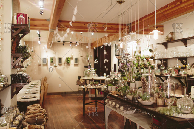 Interior of plant shop