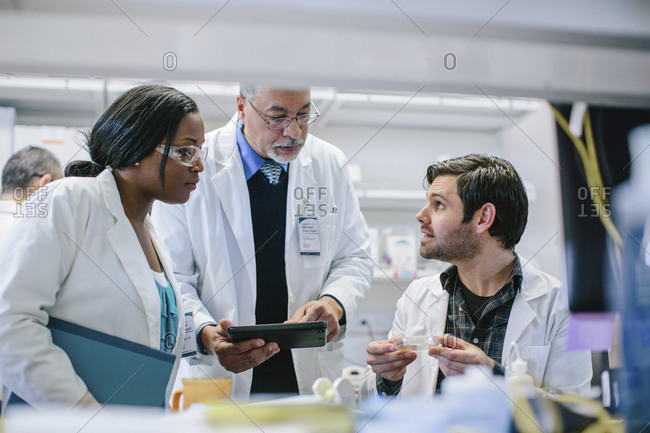Male doctor discussing with coworkers in hospital