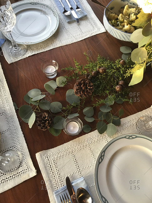 High angle view of plant decoration on dinning table