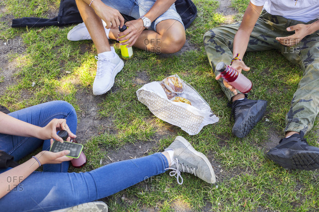 Low section of teenage girl and teenage boys (14-15) sitting on grass