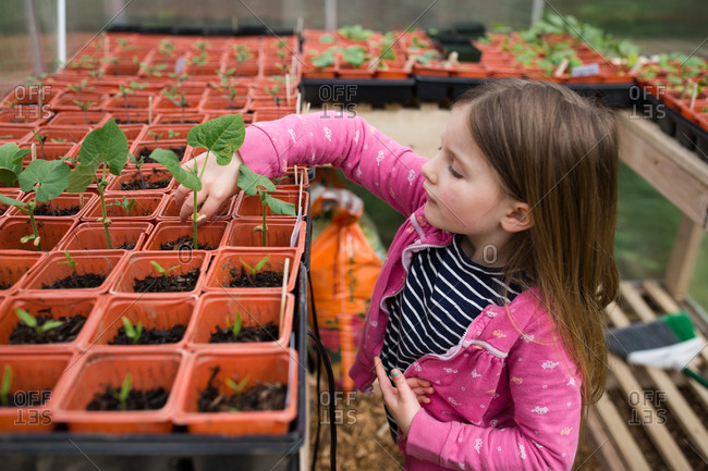 Girl looking at new plants