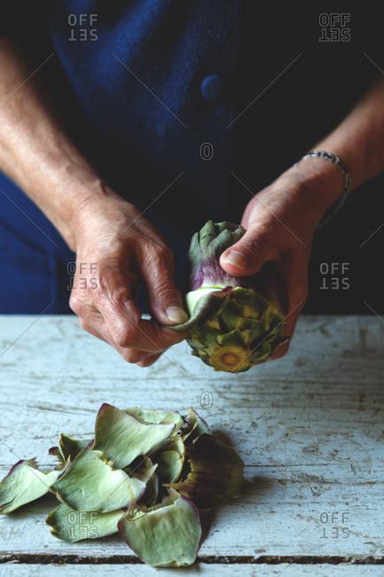 Person preparing fresh artichoke leaves