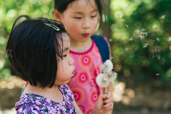 Girl watches her younger sister blow on dandelion seeds