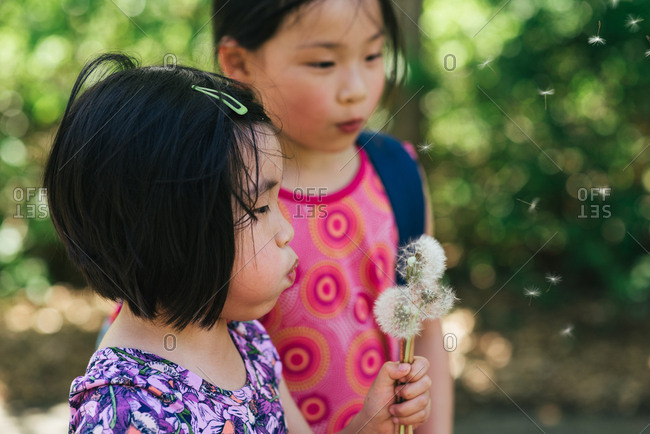 Girl watches her sister blow dandelion seeds