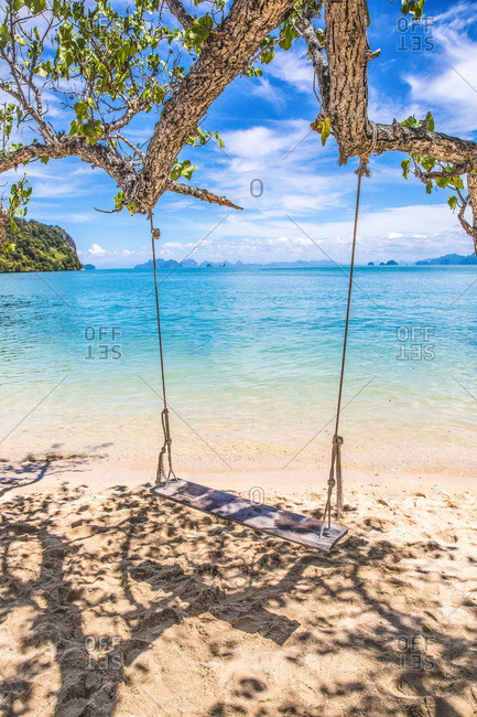 Beachfront swing in tree in Krabi, Thailand