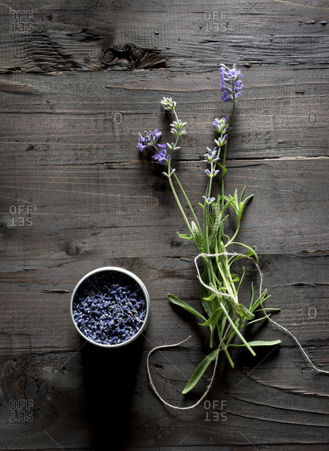 Fresh and Dried Lavender