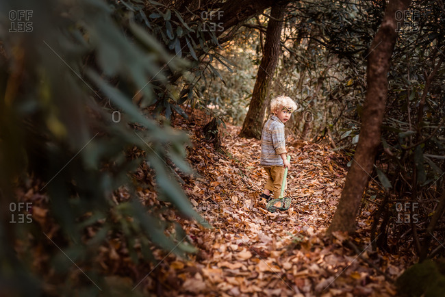 Boy walking in forest with fallen leaves
