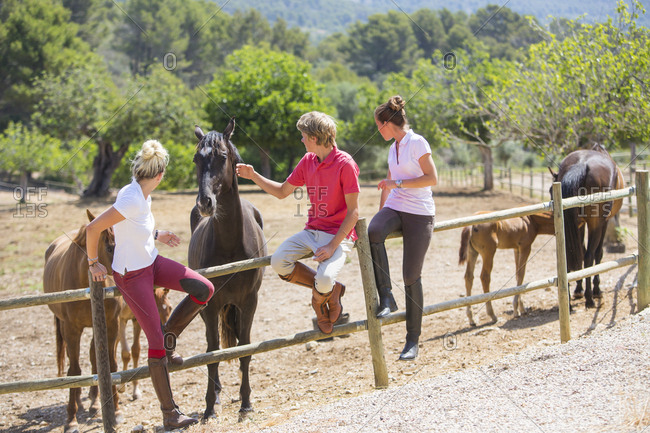 Young male and female grooms petting horses from paddock fence at rural stables