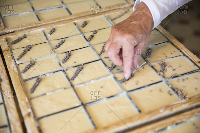 Female hand applying dried lavender to soap bars in handmade soap workshop