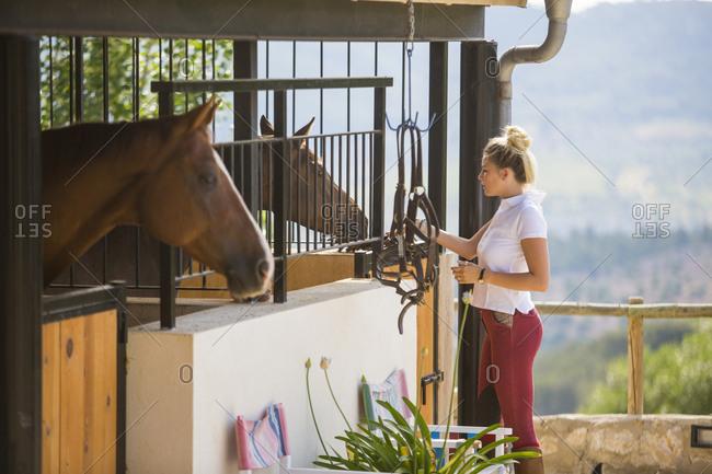 Young female groom tending horses in rural stables