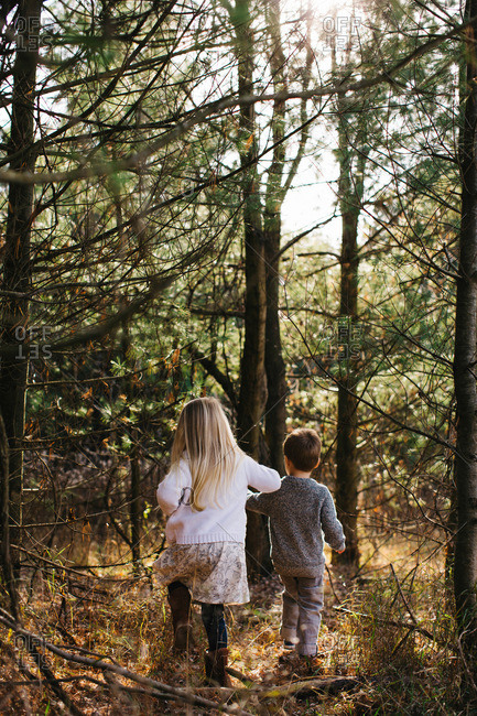 Siblings holding hands walking in forest