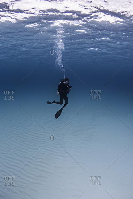 Portrait of diver, underwater view
