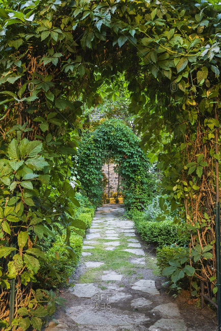 Grey flagstone path through arbours covered with climbing Vitis - Vines in backyard garden at dusk in summer, Quebec, Canada