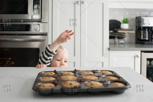 Young boy reaching up to freshly baked caked in baking tray