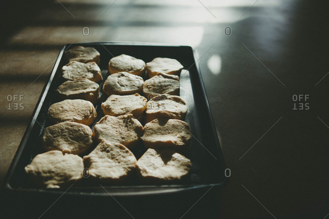 Fresh baked cookies on a sheet pan