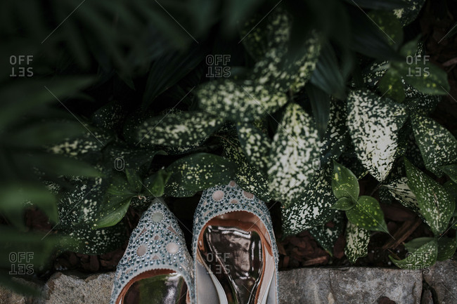 Elegant ballet flats with rhinestones and pointed toes in a garden