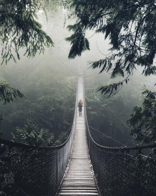 People walking across a rope bridge in a rain-forest.
