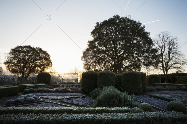 The garden in winter at Le Manoir aux Quat'Saisons, Oxfordshire.