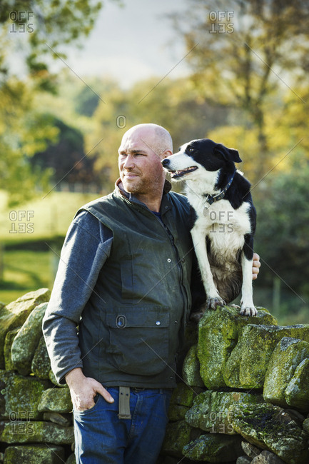 A sheep farmer, shepherd and his sheepdog standing beside him on a dry-stone wall.