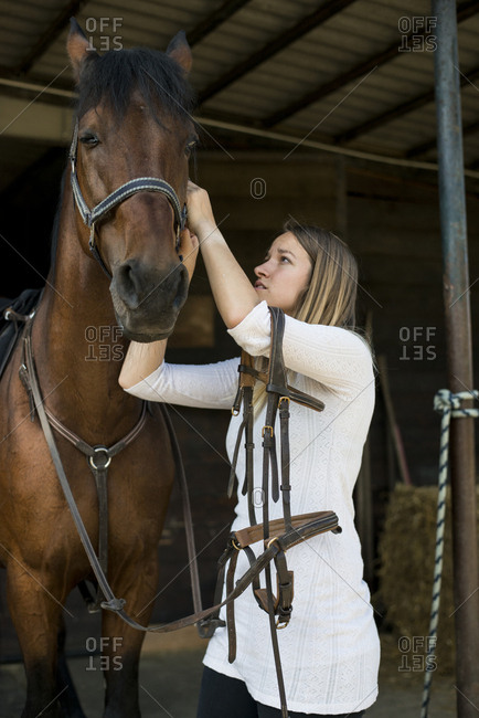 Young woman applying bridle to horse