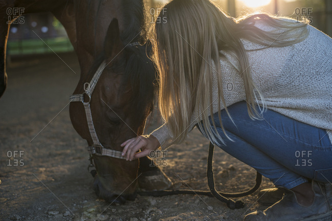 Young woman stroking horse