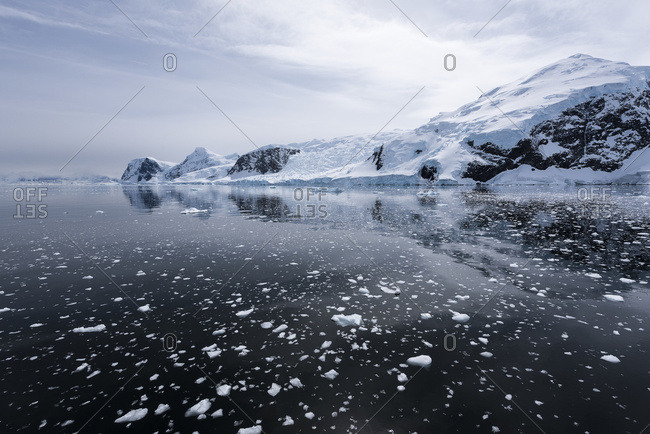 Brash ice and reflections, Antarctica