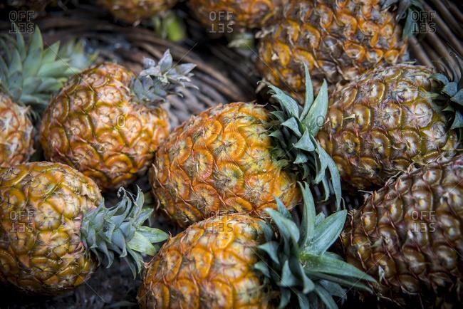 Ananas at Mercado da Graca, Ponta Delgada, Sao Miguel, Azores, Portugal
