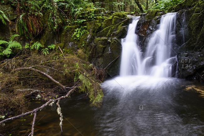 Canyon Creek flows through Ecola State Park, Cannon Beach, Oregon, United States of America