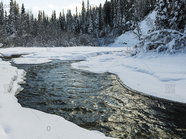 Water flowing through a forested area in winter, British Columbia, Canada