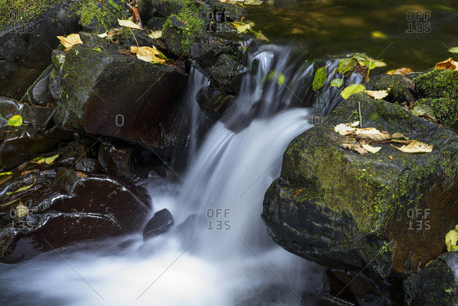 Fishhawk Creek cascades over the rocks near Lee Wooden County Park near Jewell, Oregon, Oregon, United States of America