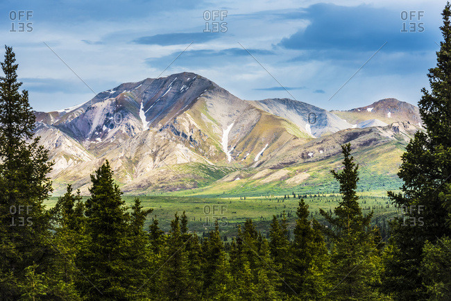 A scenic view of the Alaska Range in Denali National Park near the Savage River on a summer day in South-central Alaska, Alaska, United States of America