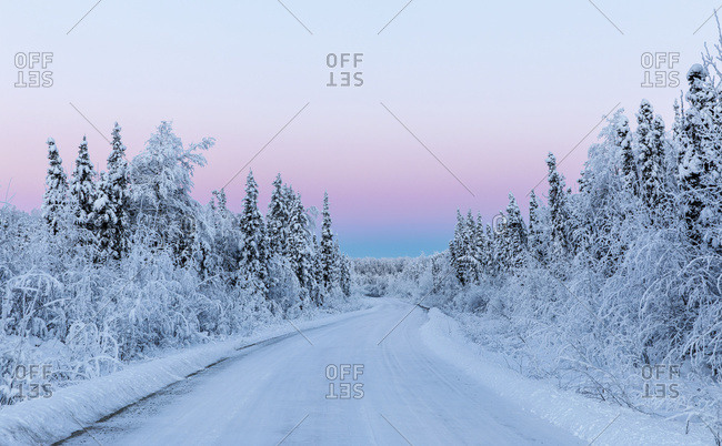 Belt of Venus and hoarfrost at sunrise along a back road in South-central Alaska in winter, Alaska, United States of America