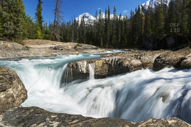 Rushing river with rocky banks and waterfalls with snow capped mountains and blue sky in the background, Field, British Columbia, Canada