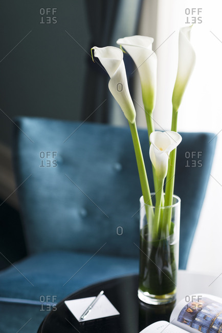 Vase of calla lilies on table