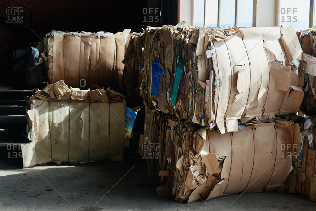Cubes of compacted cardboard prepared for recycle lying at waste sorting factory