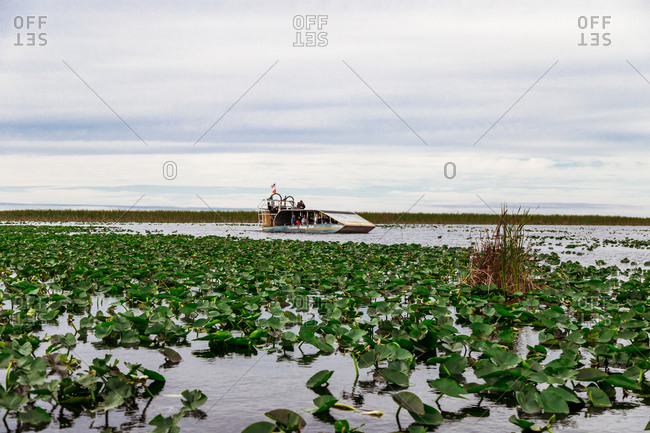 Boat in wetlands in Florida everglades