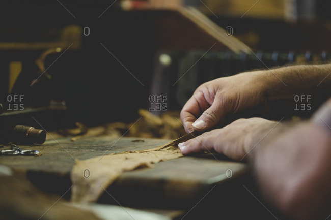 Man rolling and cutting cigars.