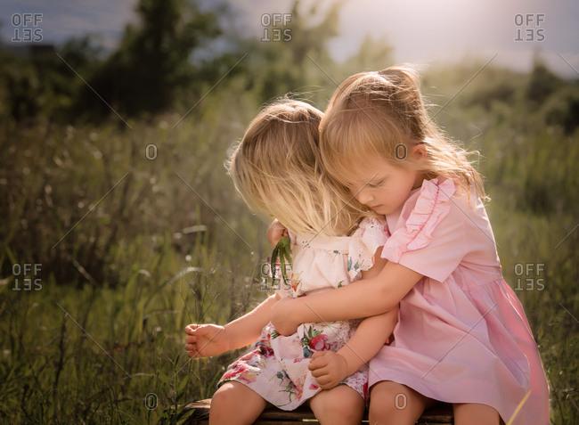 Two little girls hugging in a sunny field