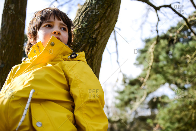Boy in yellow anorak leaning against park tree