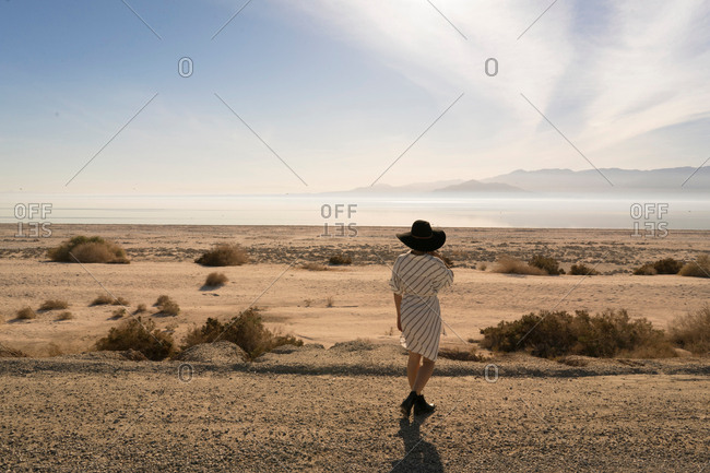 Rear view of woman wearing sunhat looking away at desert, Salton Sea, California, USA