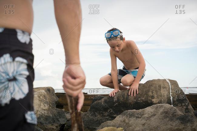 Boy rock pooling, Gulf of Mexico, Emerald Coast, Florida, USA